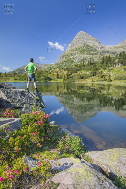 Colbricon lakes in summer with rhododendron flowering and mountain reflected on the water, an hiker standing over a rock, Lagorai, Trentino, Italy, Europe
