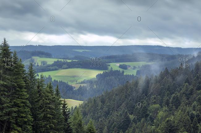 View, Highlands, Mountains, Forest, Hills, Europe, Germany, Black Forest, Triberg, Gremmelsbach, Kreuzacker,