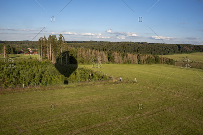 "Germany, Saxony-Anhalt, fir, conifers ""grow"" from the shadow of a hot air balloon."