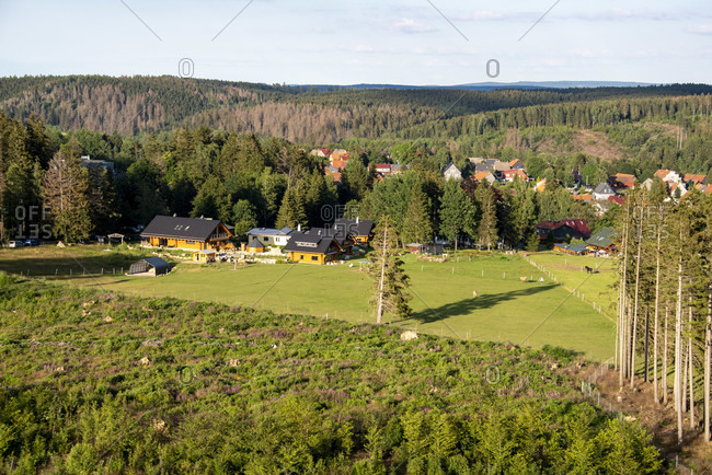 Germany, Saxony-Anhalt, Fir, resort in the Upper Harz, Harz National Park.