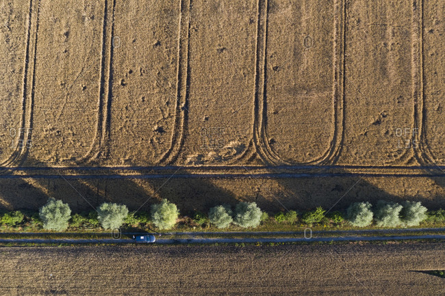 Grain field with traces of agricultural machinery, seen from the air.