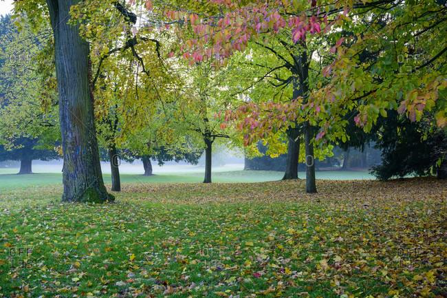 Germany, Baden-Wuerttemberg, Karlsruhe, in the castle garden.