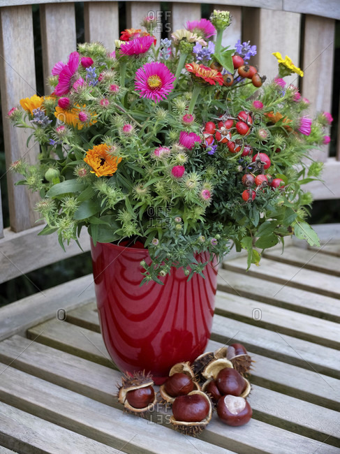 Autumnal bouquet with asters, calendula, zinnias and rose hip