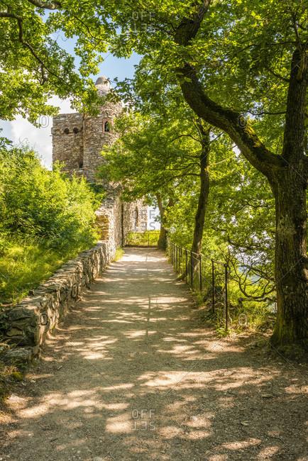 Ruins of the Rossel castle in the Niederwald near Rudesheim,