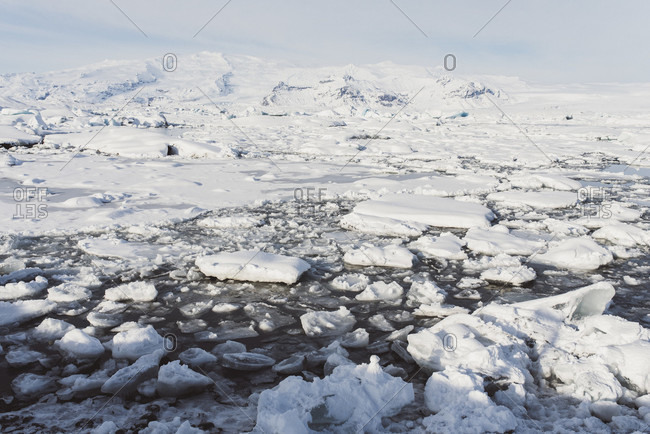 Ice floes float on Jokulsarlon, Iceland in winter