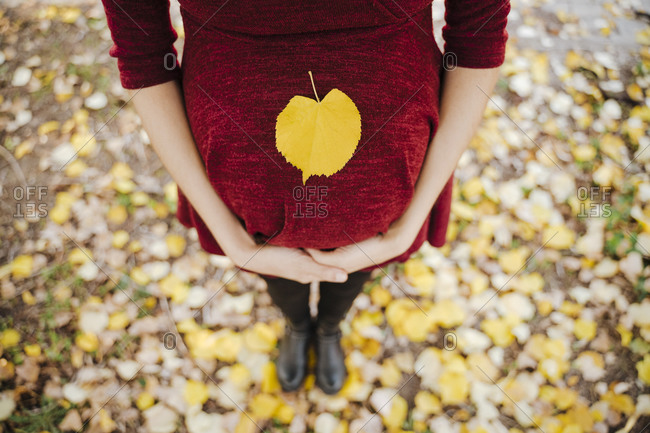 Yellow leaf on pregnant woman's belly in park