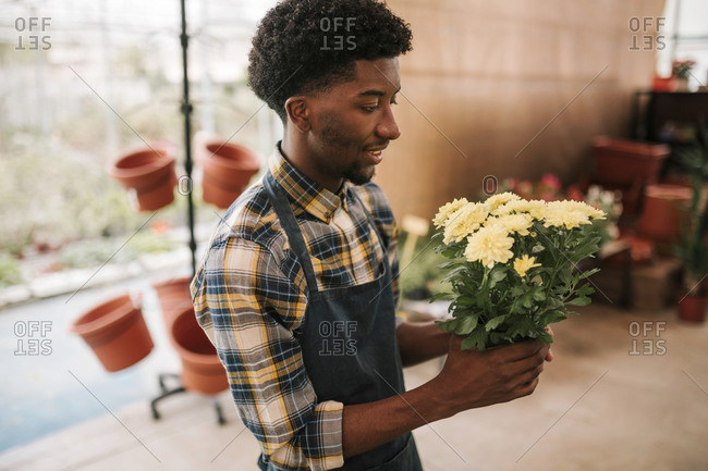 Young florist holding bunch of yellow flowers at plant nursery