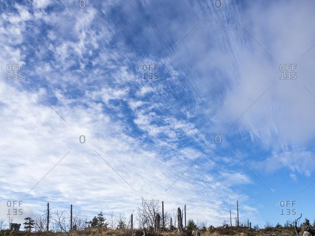 Blue sky over Bavarian Forest