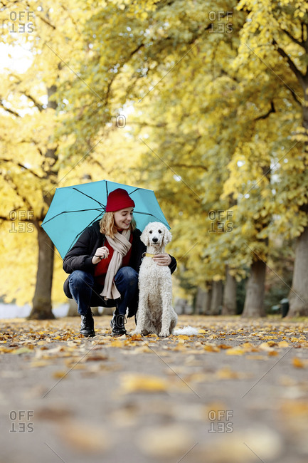 Smiling teenage girl looking at dog while crouching on road at park