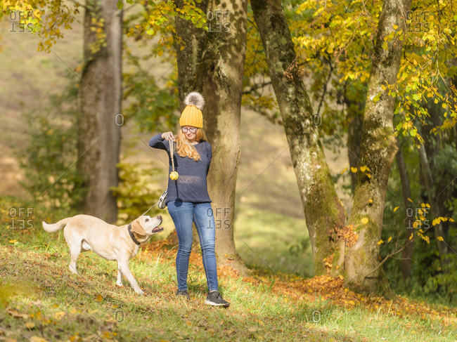 Young woman holding dog's toy while playing with Labrador Retriever during autumn in park