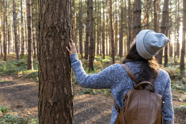 Woman exploring in Cannock Chase woodland during winter