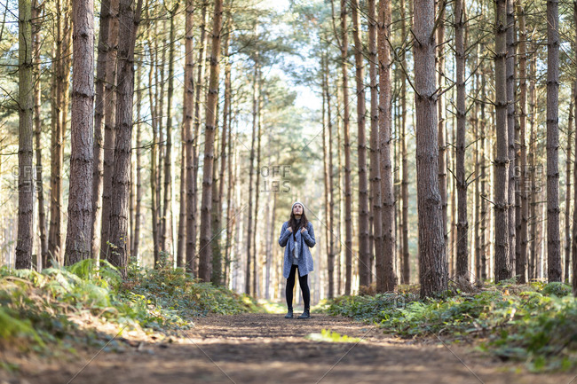 Female hiker exploring in Cannock Chase woodland during winter season
