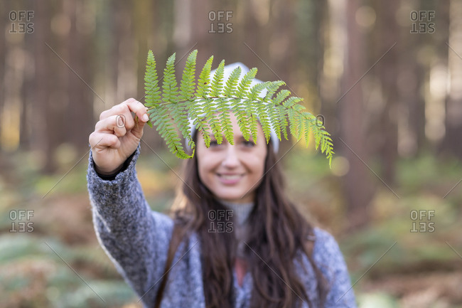 Smiling female hiker holding fern leaf while standing in Cannock Chase woodland