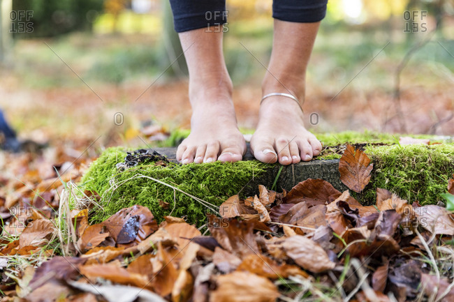 Woman standing barefoot on rock amidst autumn leaves in Cannock Chase forest