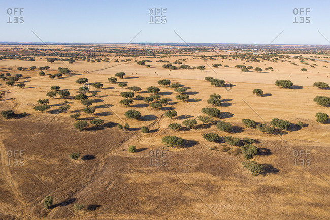 Aerial view of a dry landscape in Portugal.