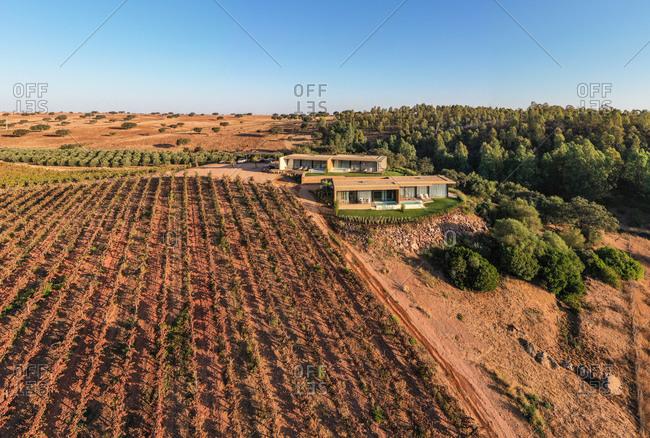 Aerial view of Vineyard estate, Albernoa, Portugal.
