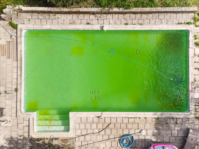 Aerial view of green swimming pool water.