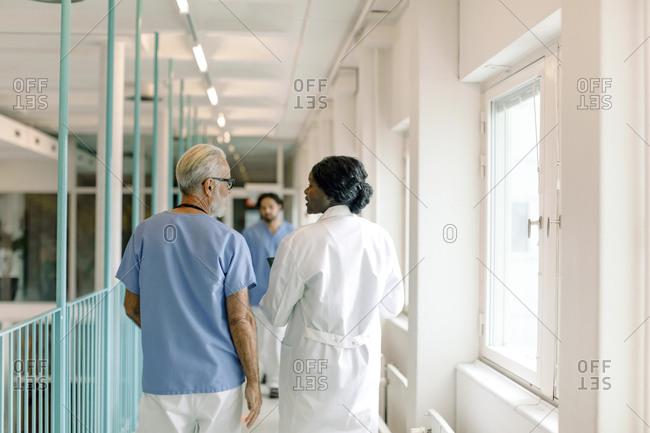 Rear view of female nurse talking to senior colleague in hospital corridor