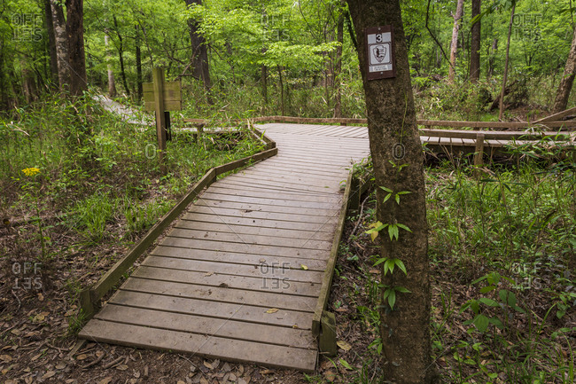 Hopkins, South Carolina, South Carolina, USA - April 11, 2016: The Boardwalk Trail starting point for the vast majority of hikes within Congaree National Park