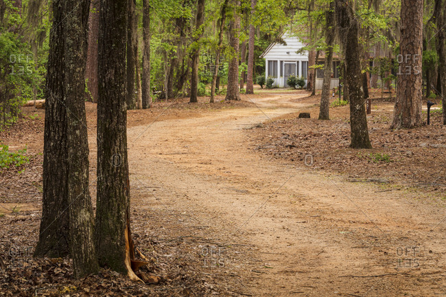 Winding dirt road as it heads towards a park building at Poinsett State Park in South Carolina