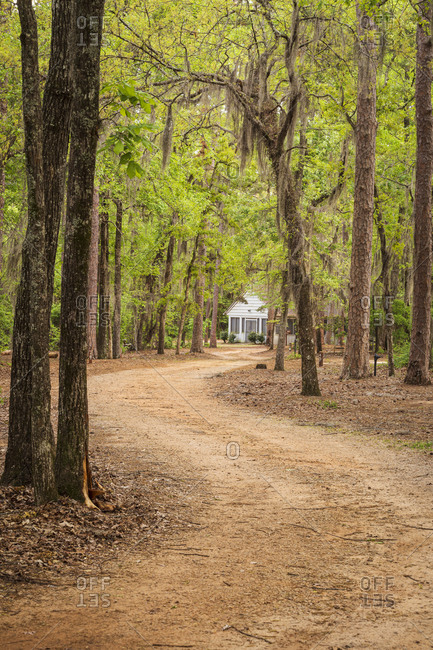 A winding dirt road leading towards a park building at Poinsett State Park in South Carolina