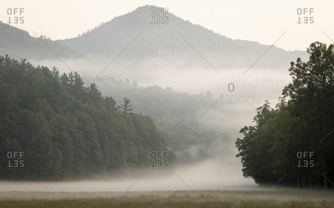 Foggy field and hills in Cataloochee Valley in the Great Smoky Mountains of North Carolina