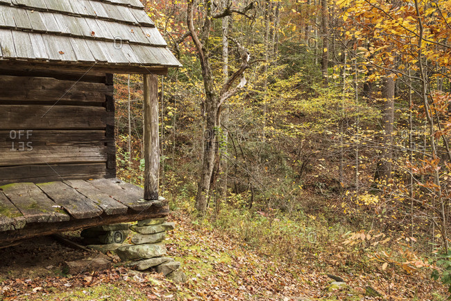 Rustic wooden cabin surrounded by colorful autumn foliage in Great Smoky Mountains National Park, Cataloochee, North Carolina
