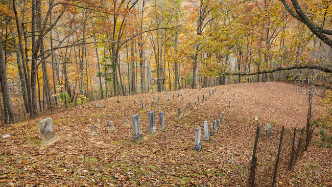 Cemetery in autumn with fallen leaves in the forest, Great Smoky Mountains National Park, Cataloochee, North Carolina