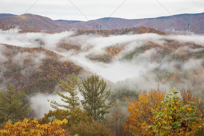 Fog covering mountains in the Great Smoky Mountains National Park, Cataloochee, North Carolina