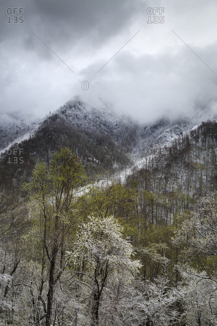 Cloudy sky over snow covered mountains in Great Smoky Mountains National Park in Tennessee