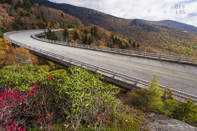 Colorful foliage surrounding the Linn Cove Viaduct and trees at peak fall color along the Blue Ridge Parkway in Western, North Carolina
