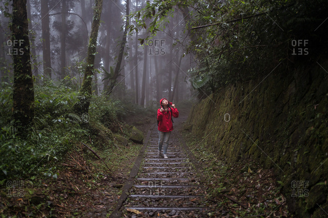 Full body of Asian female in raincoat climbing stairway and exploring nature while hiking through green forest in rainy day