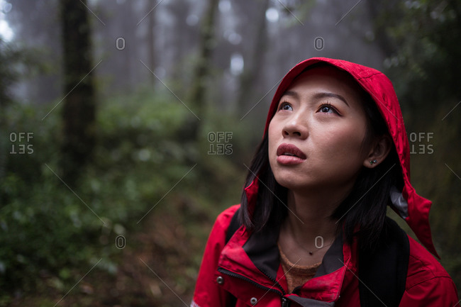 Asian female in raincoat climbing stairway and exploring nature while hiking through green forest in rainy day