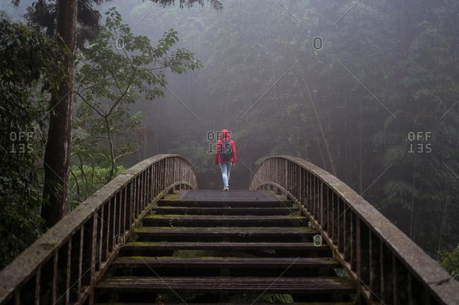 Low angle back view of unrecognizable tourist in raincoat and with backpack walking on pedestrian bridge leading through dense green woods in rainy day