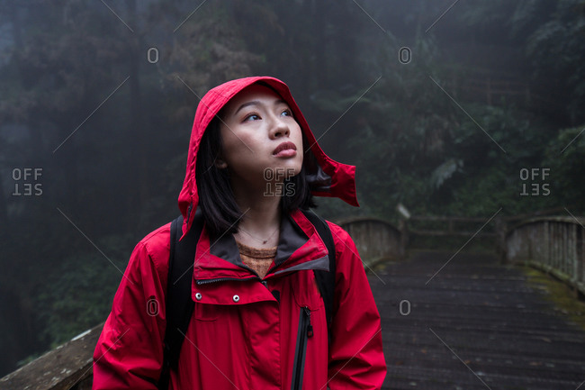 Young Asian female backpacker in red raincoat standing on old wooden footbridge and looking up while exploring foggy woods in rainy weather