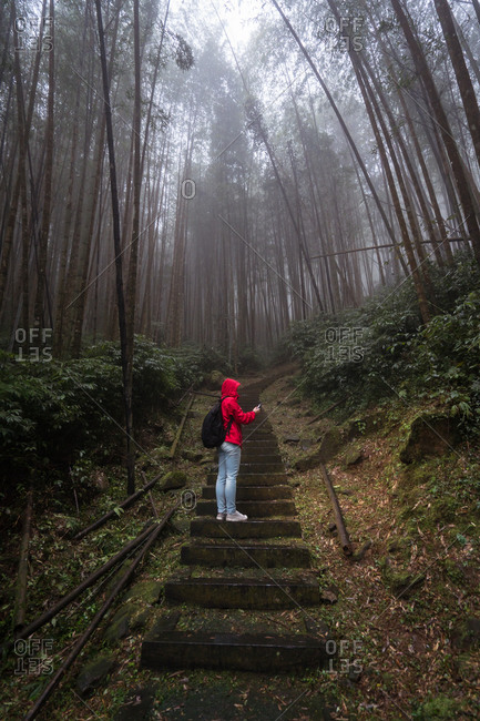 Low angle side view of anonymous traveler in raincoat and with backpack using GPS on mobile phone while checking location during hiking in dense foggy forest