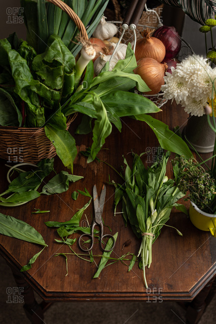 From above of bunch of fresh green salad leaves placed with radish and tomatoes on wooden table with scissors