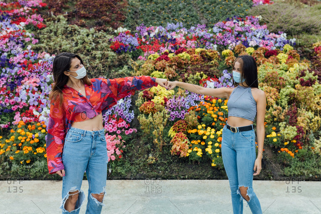 Cheerful young women in casual clothes and medical masks bumping fists while meeting in park near blooming flowers during coronavirus pandemic