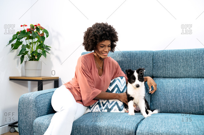 Cheerful African American curly haired female with cute little dog sitting on sofa while resting at home
