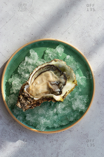 From above served fresh exquisite oysters on crushed ice