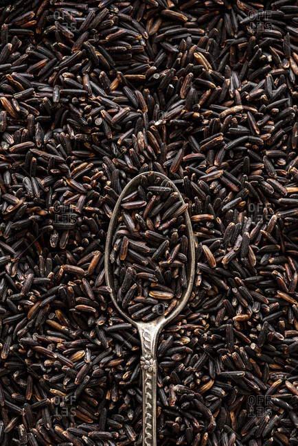 Closeup of raw black rice grains with spoon