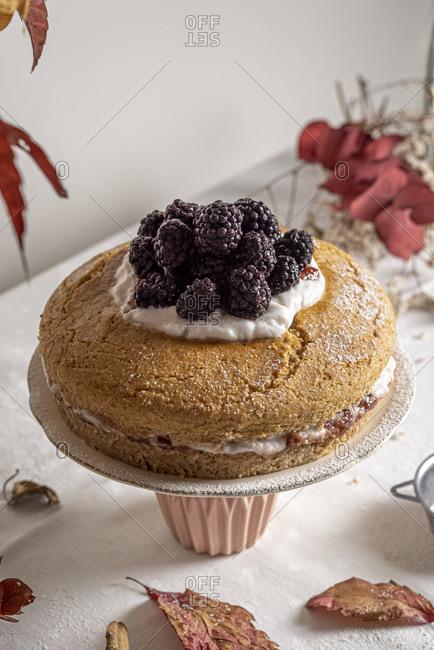 Closeup of vegan jam yogurt cake topped with berries
