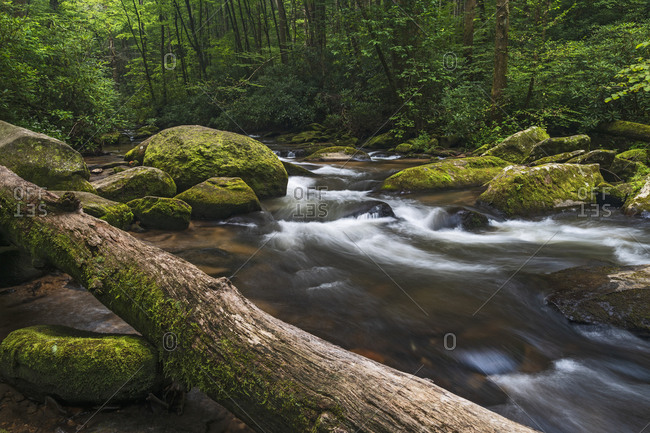 USA, Georgia, Blue Ridge Mountains, Chester Creek in Blue Ridge Mountains