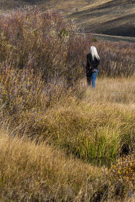 USA, Idaho, Stanley, Senior woman with long white hair walking by stream among grass in non urban landscape