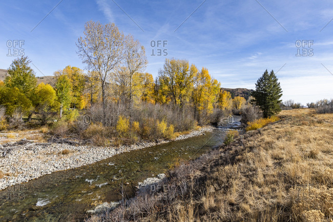 USA, Idaho, Sun Valley, Autumn landscape with river and yellow trees