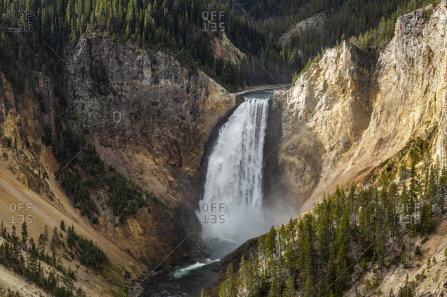 USA, Wyoming, Yellowstone National Park, Lower Yellowstone Falls in Grand Canyon of Yellowstone National Park