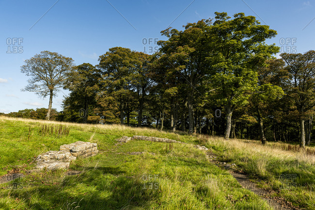 Remains from Bar Hill Fort, Antonine Wall, UNESCO World Heritage Site, Scotland, United Kingdom, Europe
