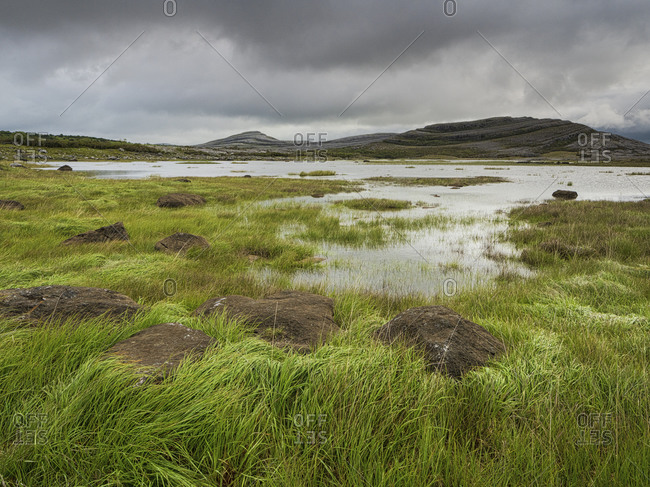 Mullagh More, Burren National Park, County Clare, Munster, Republic of Ireland, Europe