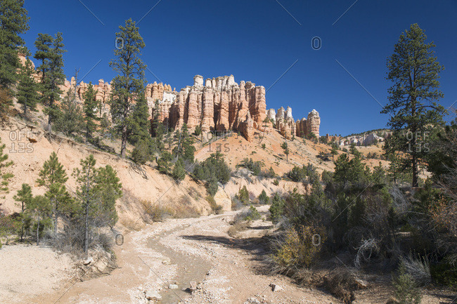 View to typical rock hoodoos from the Mossy Cave Trail, Water Canyon, Bryce Canyon National Park, Utah, United States of America, North America