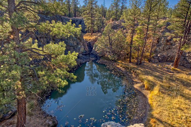 One of several natural ponds near Sycamore Falls known as the Pomeroy Tanks, Kaibab National Forest near Williams, Arizona, United States of America, North America